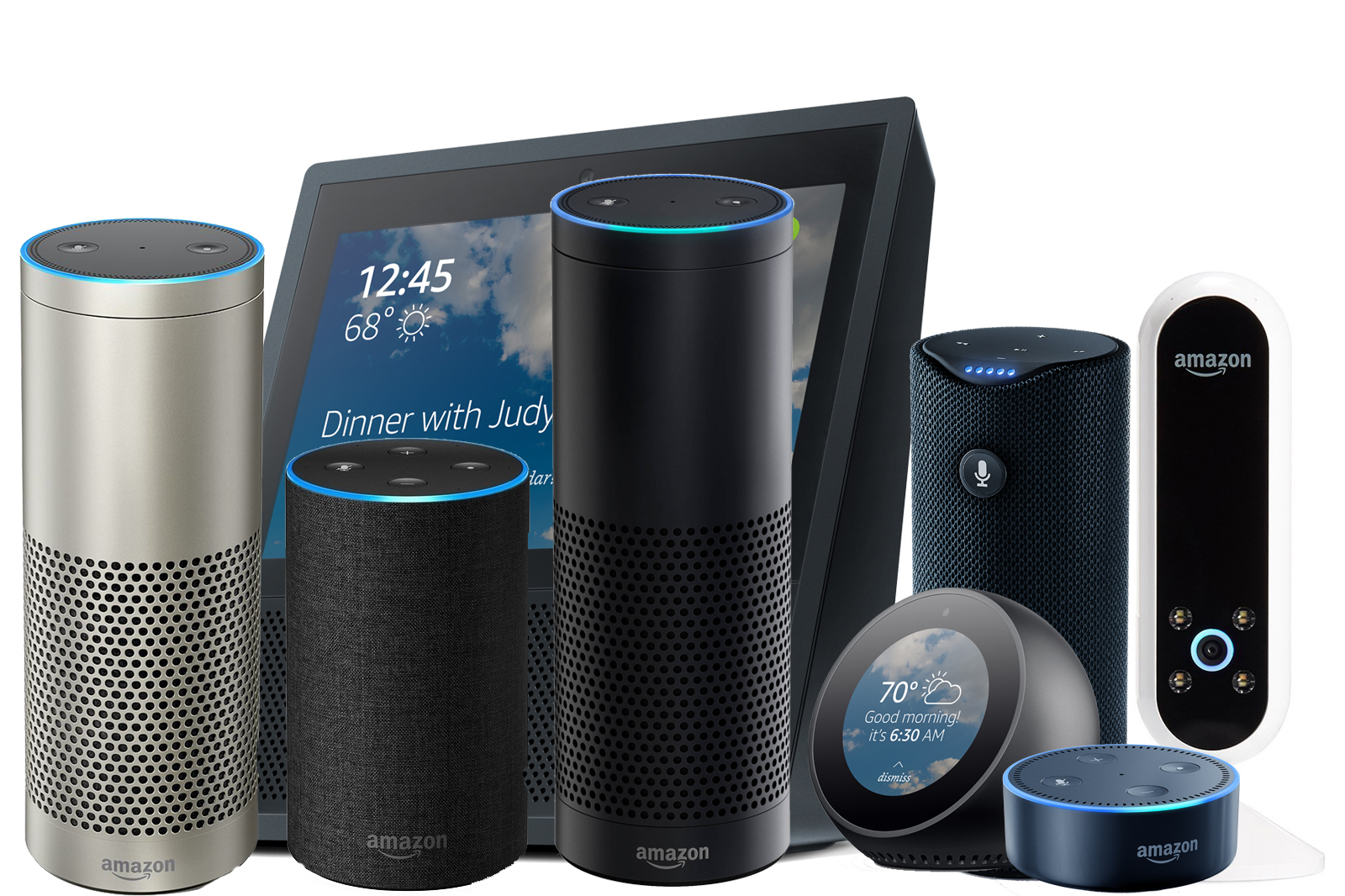 A boatload of Amazon Alexa devices